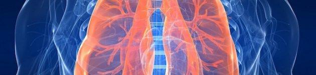 Studio, i polmoni si autoriparano dopo aver smesso di fumare